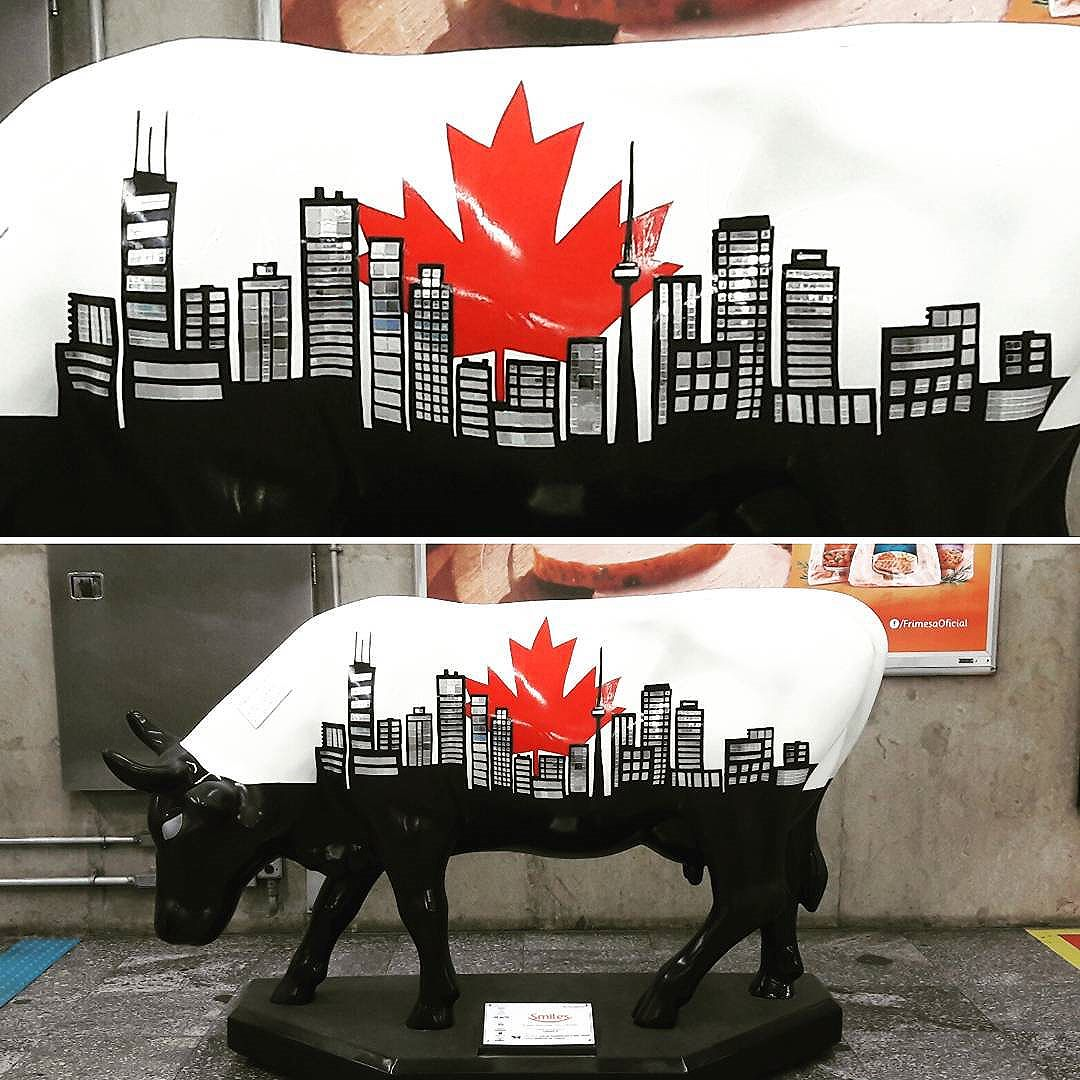 Toronto. Canadians feelings. SP/Brazil #instacow #sampa #streetartsp #bull