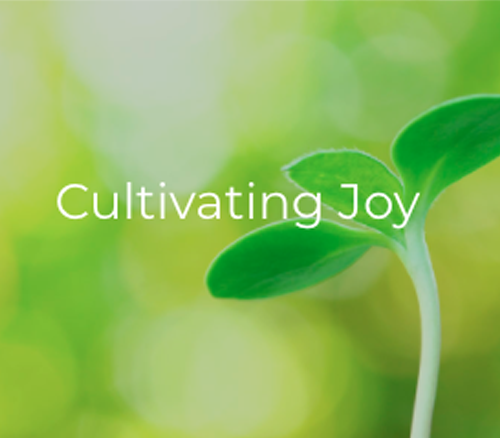 Cultivating Joy