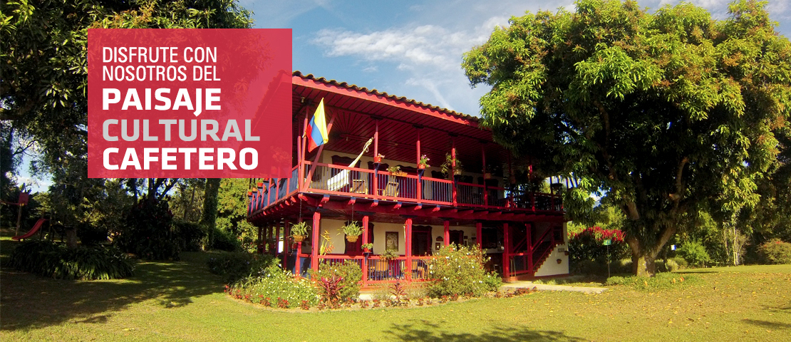 El Placer Del Descanso En La Tierra Del Café Colombiano