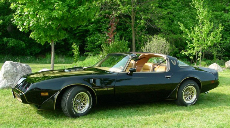 1979 Pontiac Special Edition Trans Am