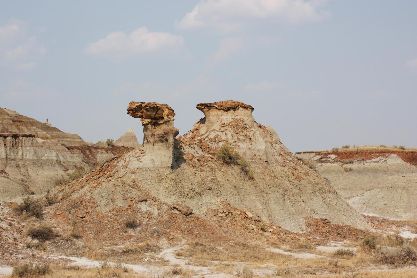 camel rock dinosaur provincial park