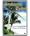 Ambient Calm DVD