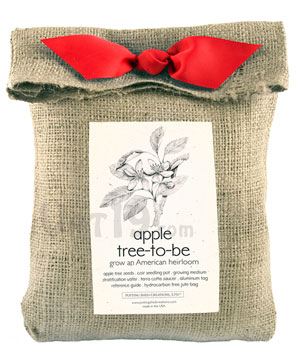 Apple Tree-to-Be Kit