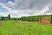 474 Seclusion Valley DR  - MLS® # C4258546