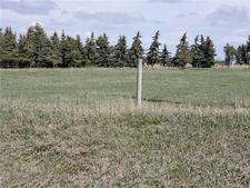 100 WILDFLOWER RD  - MLS® # C4299650