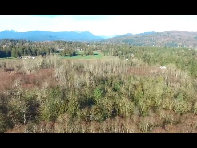 29421 MCTAVISH ROAD - MLS® # R2445806