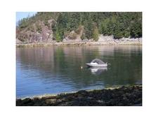 BLK7 SEA-TO-SKY HIGHWAY - MLS® # R2261483