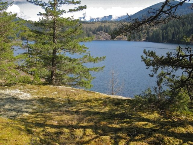 LOT 26 WEST BAY LANDING - MLS® # R2317863