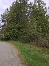 Lot 16 RONDEVIEW ROAD - MLS® # R2360554