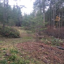 LOT A BEDDIS ROAD - MLS® # R2420499