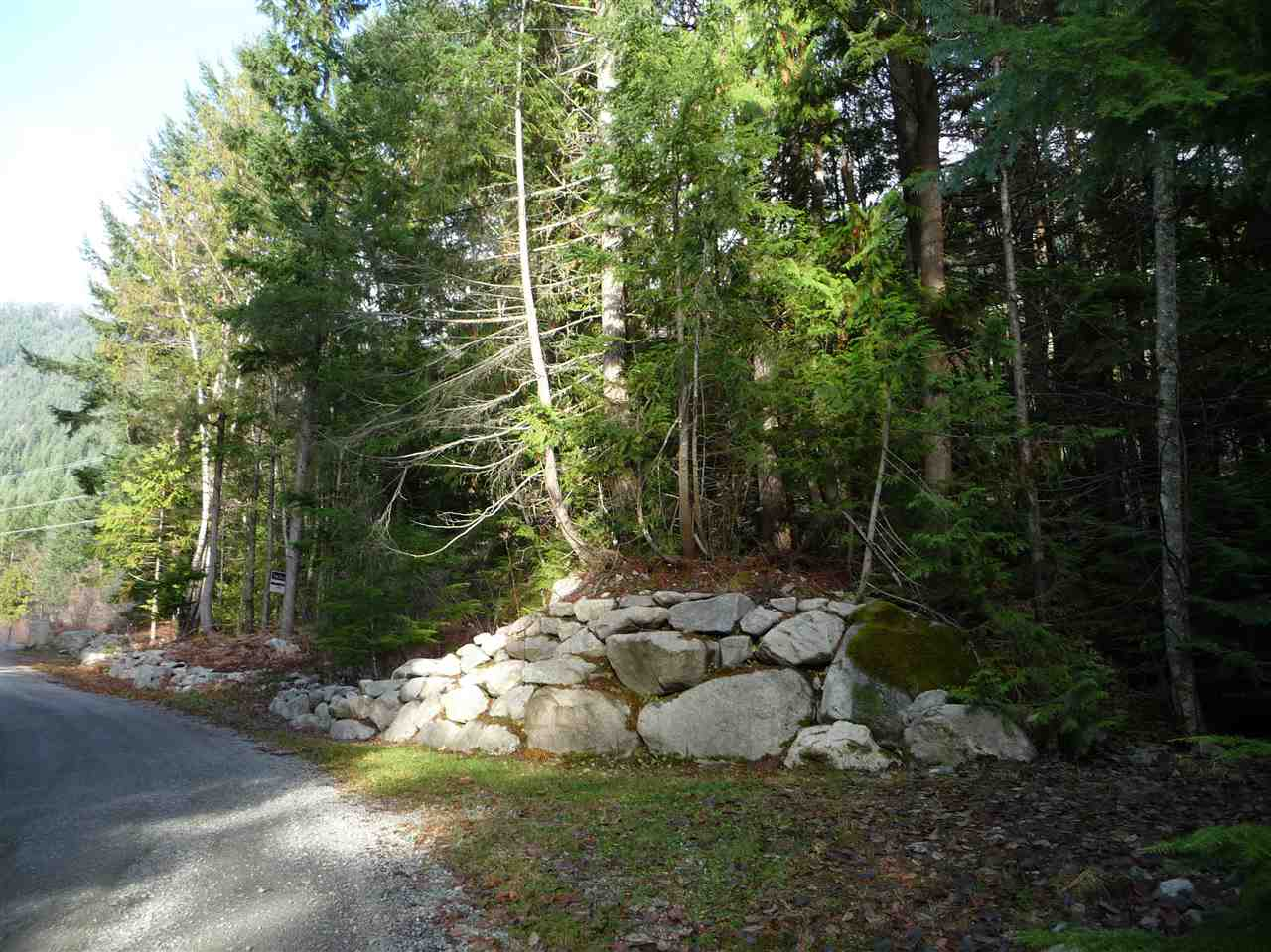 45 IN-SHUCK-CH FOREST ROAD - MLS® # R2471928