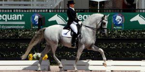 Cavalo de atleta holambrense não competirá em Olimpíadas após lesão