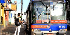 Ônibus operam normalmente em Holambra pela manhã