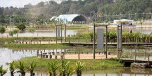 Parque Luiz Latorre