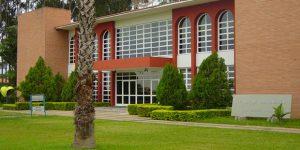 CongressodeArqueologia reunirá estudiosos de vários países