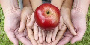 Campinas recebe prêmio nacional na área de segurança alimentar