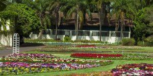 Jardim Botânico Plantarum conta com milhares de espécies vegetais