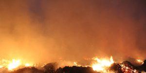 Defesa Civil de Artur Nogueira se mobiliza para conter incêndio próximo a Aidan