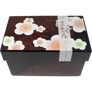 HAKOBEN Plum Blossoms 2 Tier Bento Box w/ Refrigerant & Elastic Band