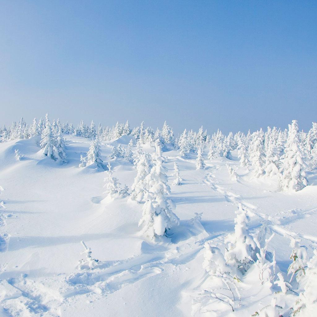 Snow conditions s paq for Porte et fenetre vaillancourt sept iles