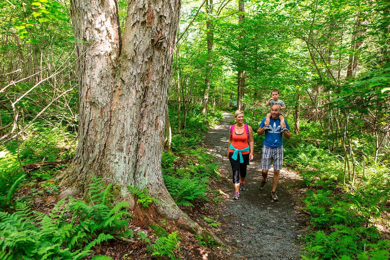 Parc National De Frontenac Outdoor Family Activities S 233 Paq