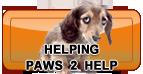 NewClinic_HelpingUs