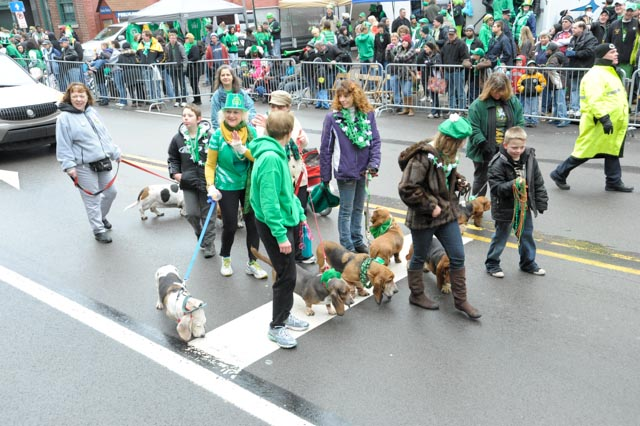 St Patties day 2013