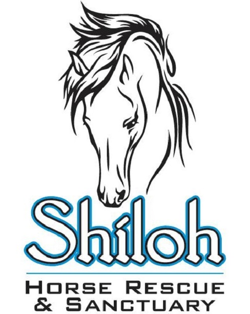 a logo white