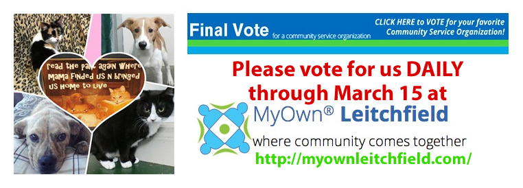 2014_My_Own_Leitchfield_Final_Round