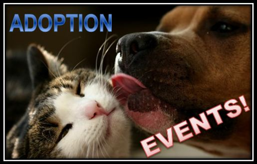 Adoption Events Home Page