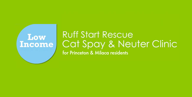Low Income Spay and Neuter Clinic