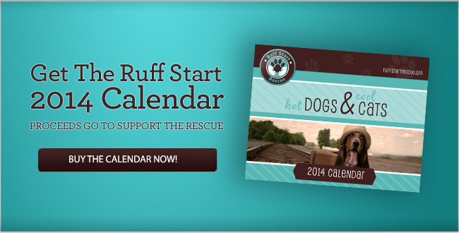Get The Ruff Start 2014 Calendar - PROCEEDS GO TO SUPPORT THE RESCUE