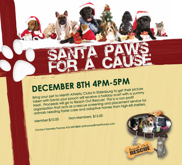 Santa Paws for a Cause