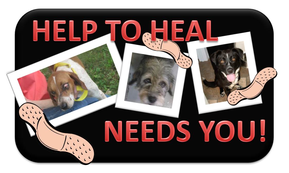 Help To Heal Poster