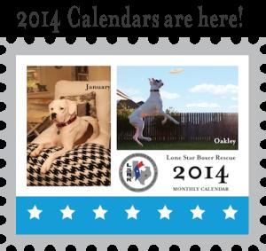 2014 calendar thumb