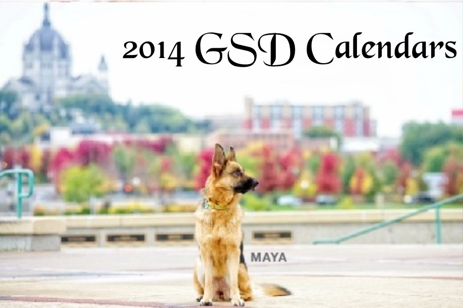 2014 GSD Calendar Button Small
