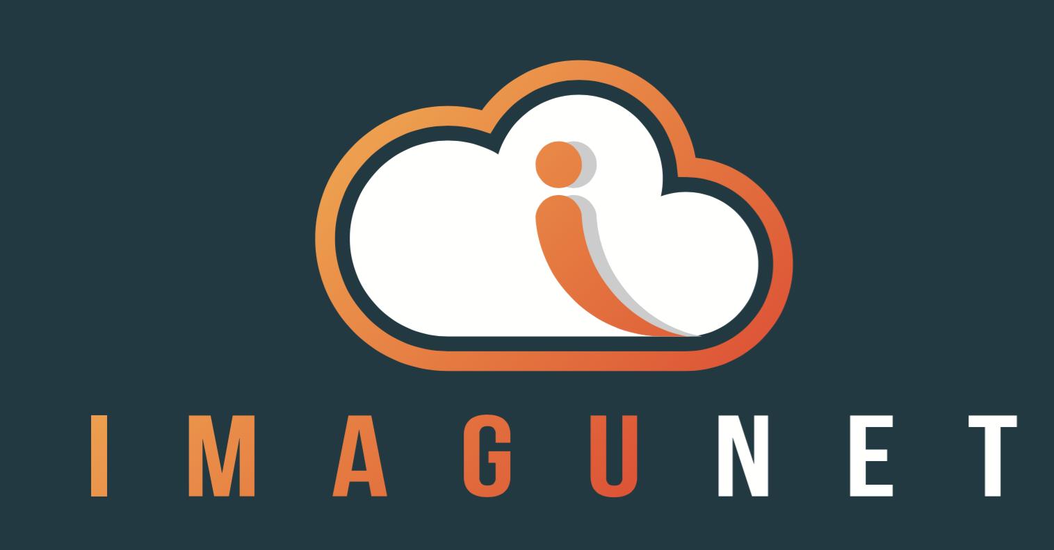 Imagunet Logo