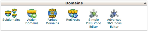 cPanel domain section, including Simple and Advanced DNS Zone Editor buttons