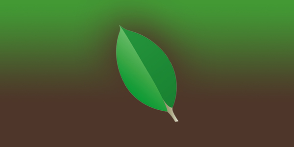 The flexibility of MongoDB means more decisions must be made by the developer