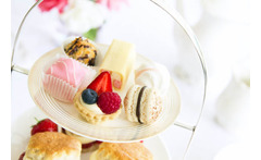 Traditional or Chocolate Afternoon Tea & Bubbly for 2 @ Hardwicke Hall, Hartlepool £19 instead of £49.90 for afternoon tea for two people with a glass of sparkling wine each at Hardwicke Hall, Hartlepool - choose traditional or chocolate and save 62% - wowcher