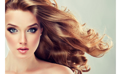 Cut, Macadamia Treatment, Blow Dry, Head Massage & Prosecco £12 instead of £45 for a cut and blow dry with a macadamia conditioning treatment, head massage and glass of Prosecco at Ocean Hair & Beauty, Leith - save 73% - wowcher