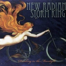 CD NEW RADIANT STORM KING - DRINKING IN THE MOONLIGHT (NOVO/LACRADO)