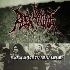 Reexamine ‎– Laughing Dolls In The Purple Sunshine CD