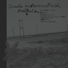 Mácula / Seeds in Barren Fields Split CD