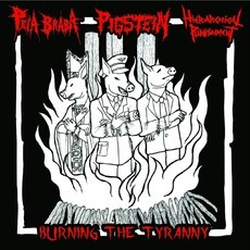 3 way split PEIA BRABA, PIGSTEIN, HIERACHICAL PUNISHMENT CD