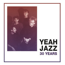 LP YEAH JAZZ - 30 YEARS (NOVO)