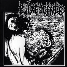 PUTRESCENCE Fatal White Pustules Upon Septic Organs CD