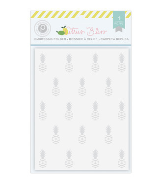 EMBOSSING FOLDER PINK PAISLEE - CITRUS BLISS - PINEAPPLE