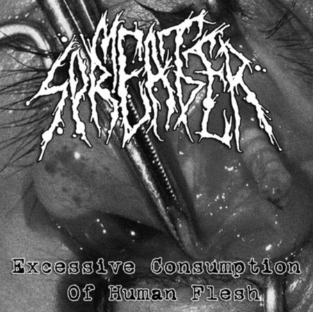 MEAT SPREADER - Excessive Consumption Of Human Flesh CD