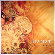 CD TIAMAT - WILDHONEY (NOVO/LACRADO) SLIPCASE